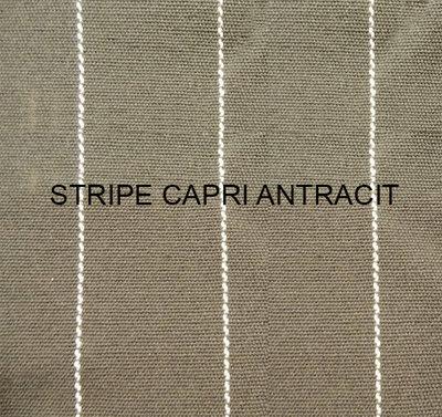 Kussens Stripe Capri Antracit